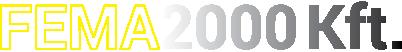 Fema2000 Logo